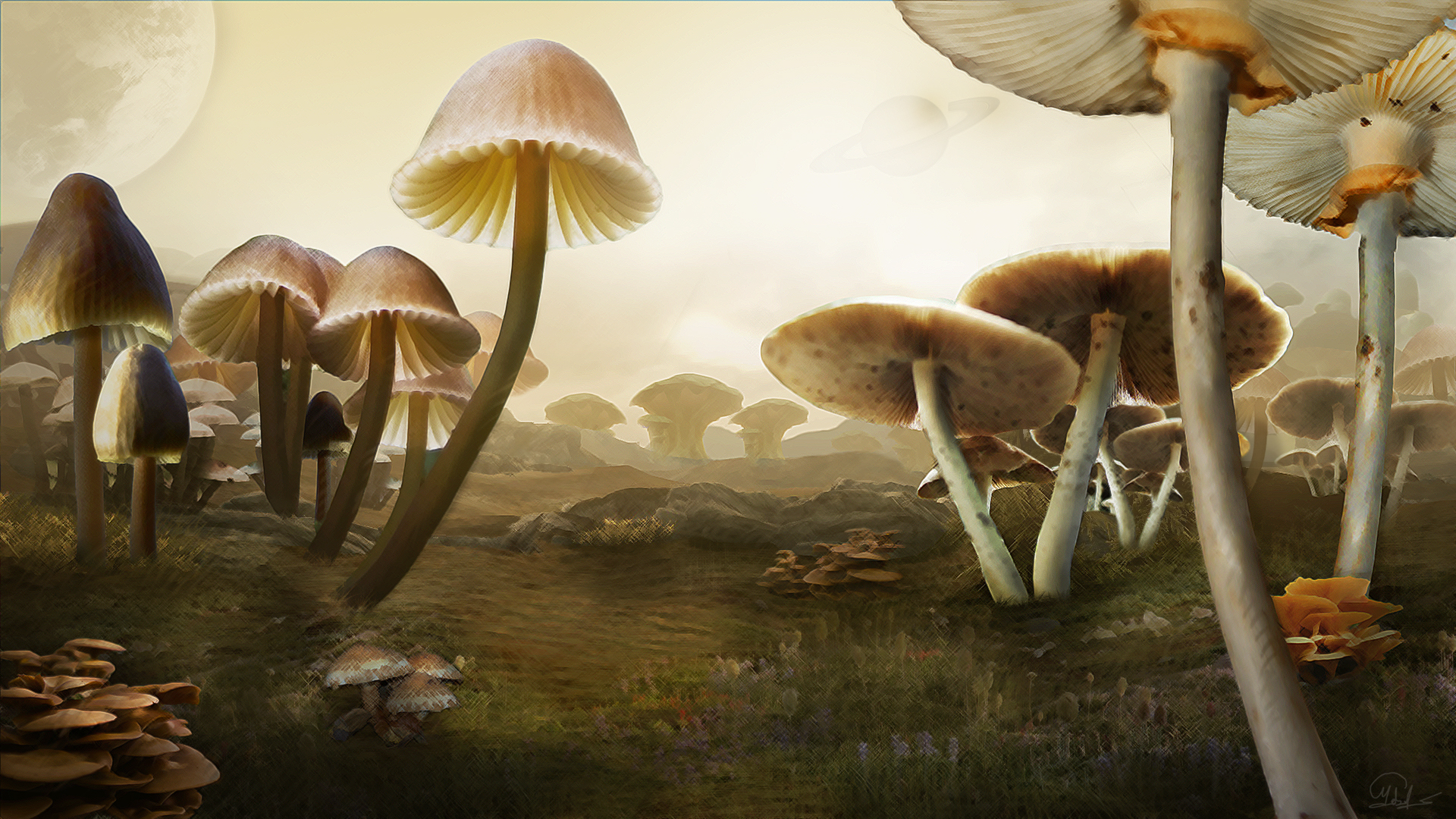 Giant Mushrooms – Matte Painting | MCrassus Art The Word Details
