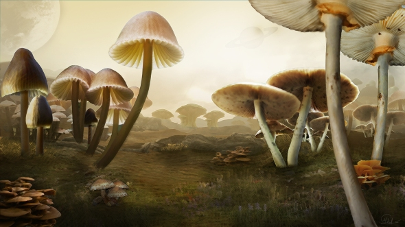 Matte Painting - Giant Mushrooms