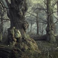 https://mcrassus.com/2018/05/21/the-darkest-part-of-the-woods/